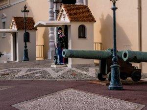 Guard at the palace