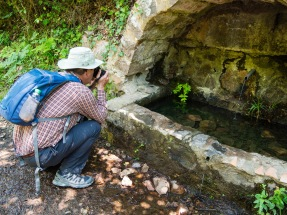 Chris taking photos of the toad