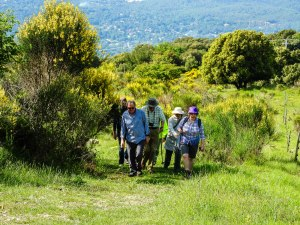 One of the walks at Courmettes