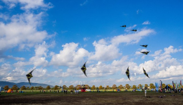Formation kite flying, going so fast they blur