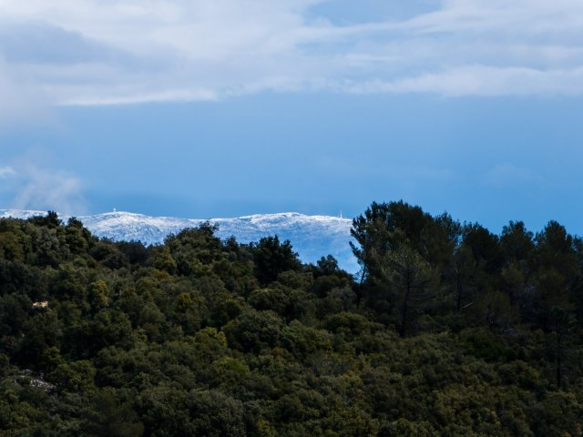 Snow down to 1000m